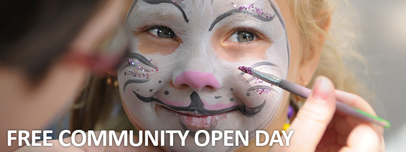 Open-Day-Face-Painting